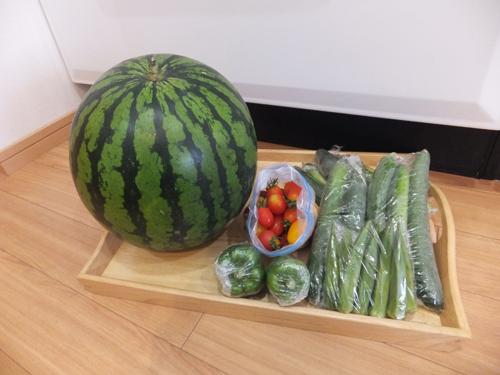 20150810野菜1